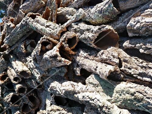 Cork rinds in the Algarve (Portugal)