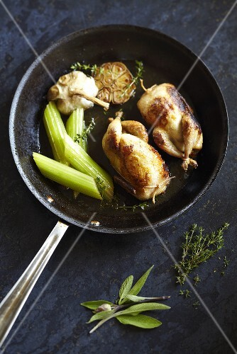 Quail with garlic and celery in a pan