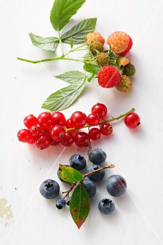 Raspberries, redcurrants and blueberries