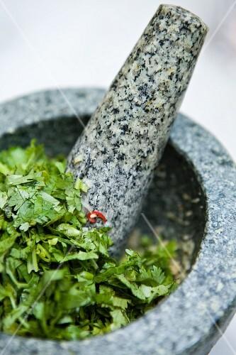 Coriander in a granite mortar