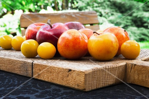 Red and yellow plums with mirabelles
