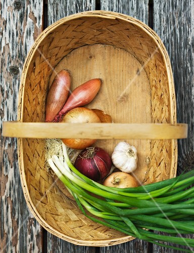 Assorted varieties of onions and garlic in a basket