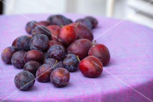 Fresh plums on a garden table