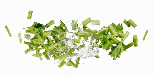 Celery with a water splash