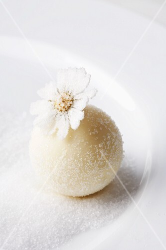 A white chocolate praline decorated with a candied daisy