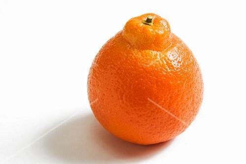 One Whole Navel Orange on a White Background