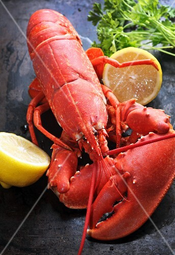 Cooked lobster with lemon