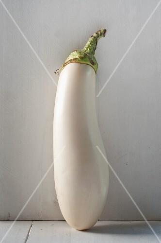 A Single White Eggplant on a White Background