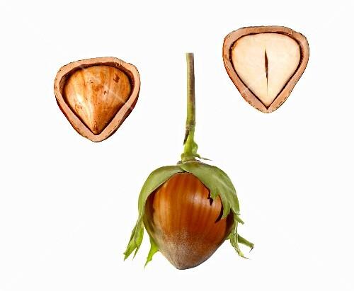 Hazel nut, whole and halved