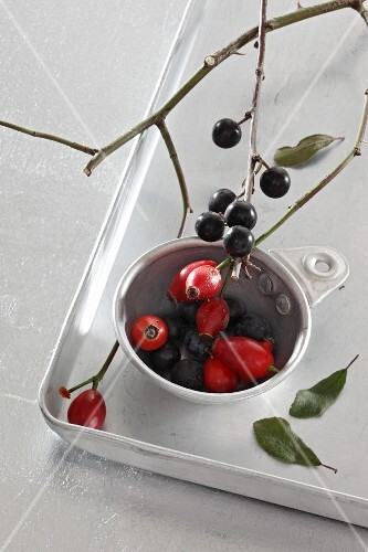 Rosehips and sloes