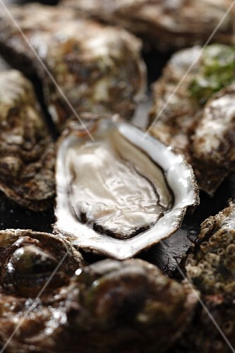 Fresh oysters, whole and halves (close up)
