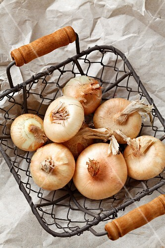 Brown onions in a wire basket