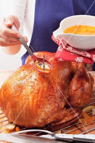 Basting roast turkey with lemon marinade