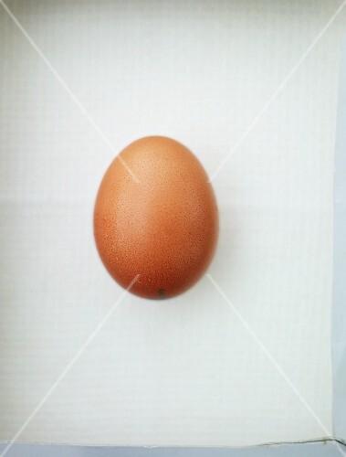 A brown hen's egg