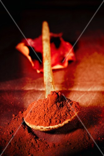Cocoa powder on an old wooden spoon