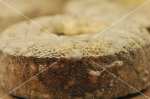 Mouldy soft cheese (France)