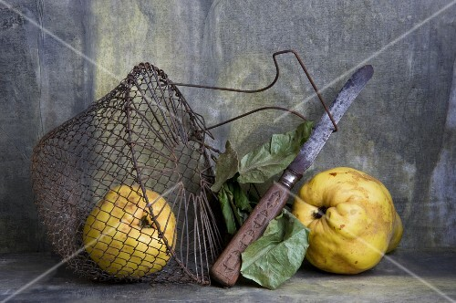 Quinces with a knife and a wire basket