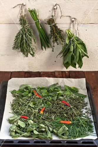 Herbs on a baking tray lined with baking paper to dry in the oven