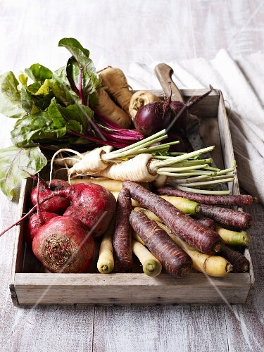 Various old turnips in a crate