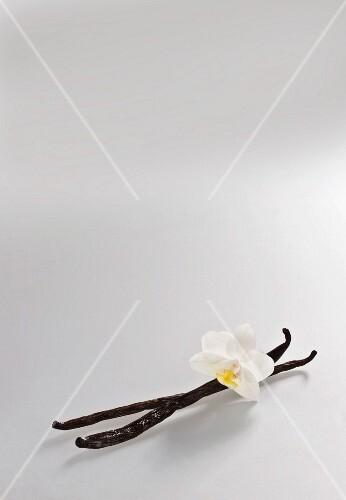 Two vanilla pods