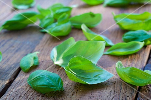 Basil leaves on a wooden surface