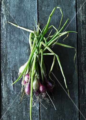 A bunch of spring onions on a wooden surface (seen from above)