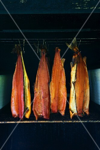 Smoked salmon fillets in a smoking chamber