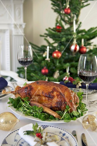 Roast goose on a bed of cress for Christmas dinner