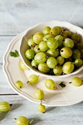 A bowl of fresh green gooseberries