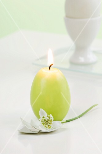 Easter egg with snowdrop and egg-shaped candle