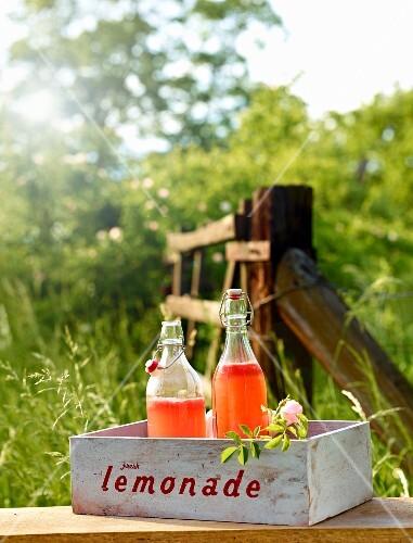 Melon lemonade for a picnic