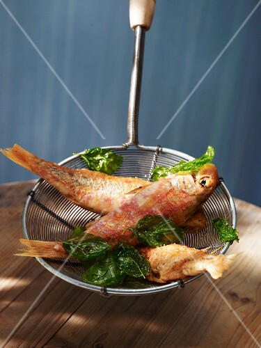Fried red mullet with basil