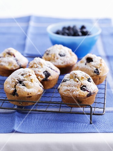 Blueberry muffins with icing sugar on a wire rack
