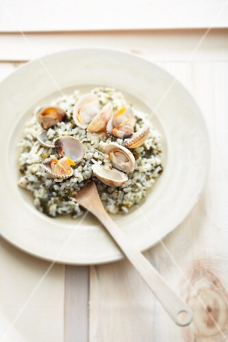 Sorrel risotto with venus mussels