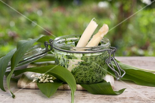 Ramson and stinging nettle pesto with white asparagus