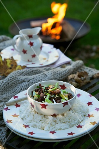 Thinly sliced beef with green onions on rice (Bonfire Night, England)