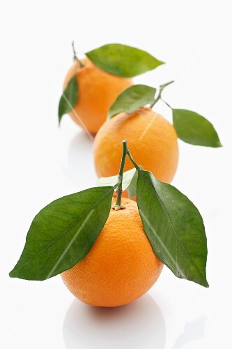 Three oranges with leaves