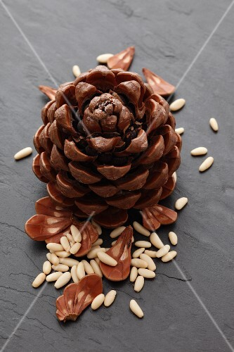 A pine cone and pine nuts