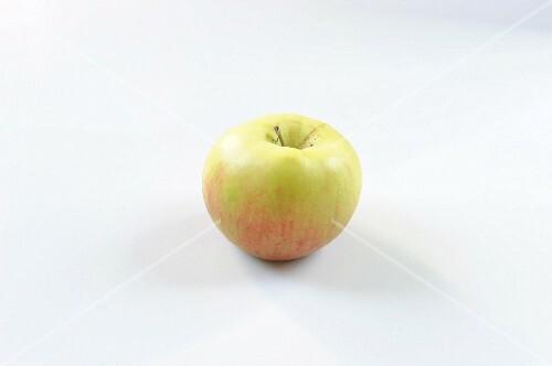 A Santana apple