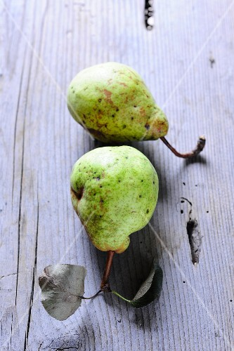 Two Hardenponts Butterbirne pears with stems and leaves