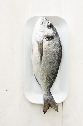 A fresh bream (seen from above)
