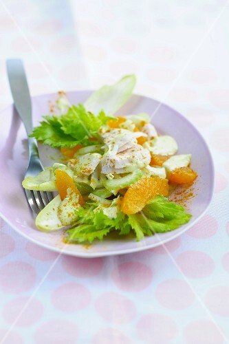 Chicken salad with oranges and celery