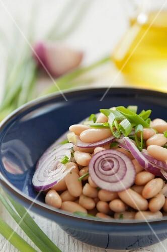 Bulgarian bean salad