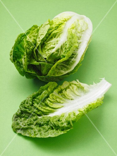 A cos lettuce and a single leaf