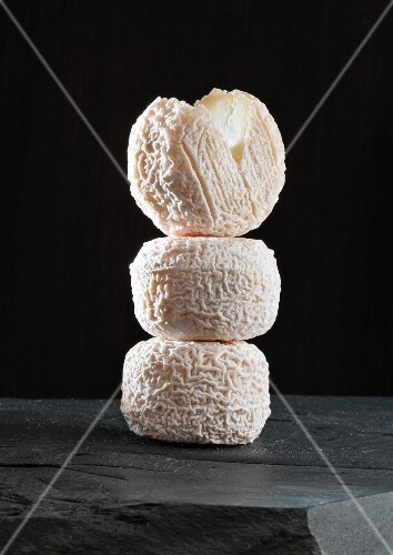 Chavignol (French goat's cheese)
