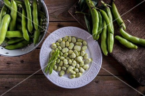 Broad beans pods and shelled broad beans on a white plate