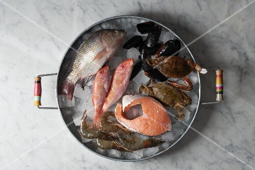 Fish and seafood on ice cubes