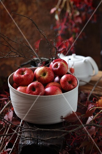 Red apples in a white bowl