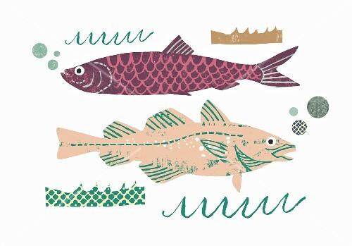 Two whole fish (illustration)