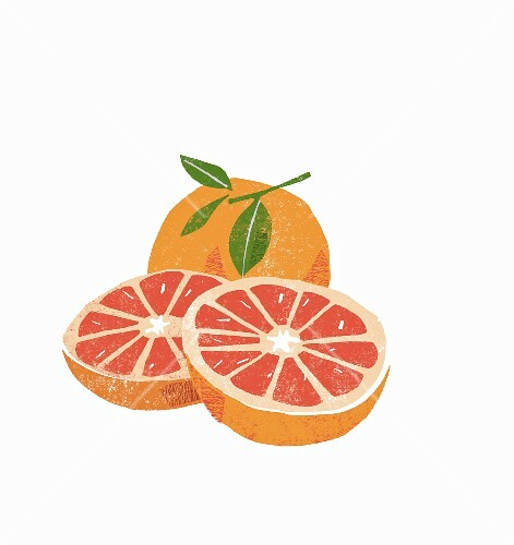 Grapefruit, whole and halved (illustration)
